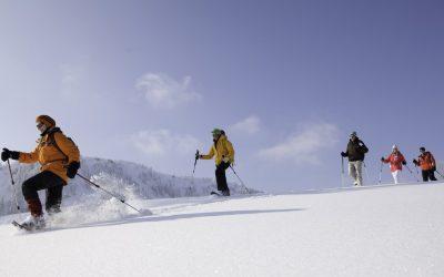Mittwoch: Gemütliche Schneeschuhwanderung für Einsteiger zum Gipfel des Hündlekopfs