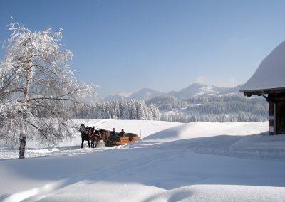 Alpe Moos Steinhauser Riefensberg Winter 57
