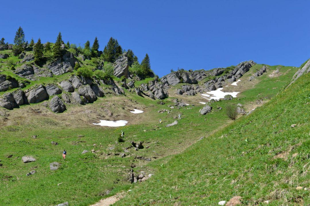 Bergwelt Oberstaufen Allgaeu Bildgalerie Erlebniswanderung Nagelfluhkette DSC 4099b 13