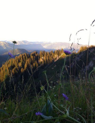 Bergwelt Oberstaufen Allgaeu Sommer IMG 20161125 WA00051 21