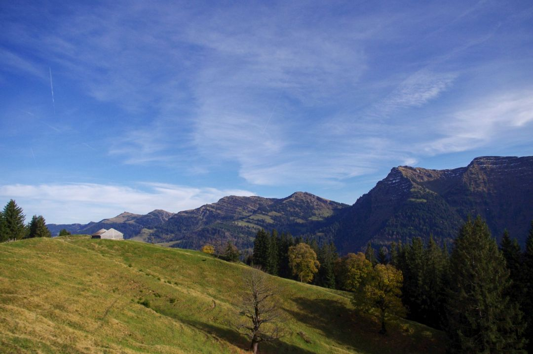 Bergwelt Oberstaufen Allgaeu Uncategorized IMGP3303 2 47