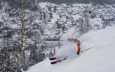 Tiefschneekurs & Skitouren Schnuppern Allgäu