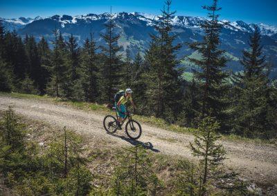 E Bike Panoramatour mit Fahrtechniktaining