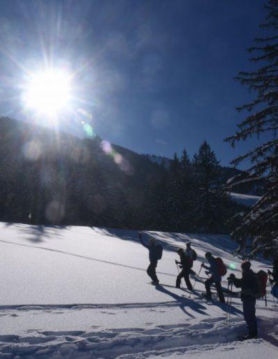 Schneeschuh 5 1