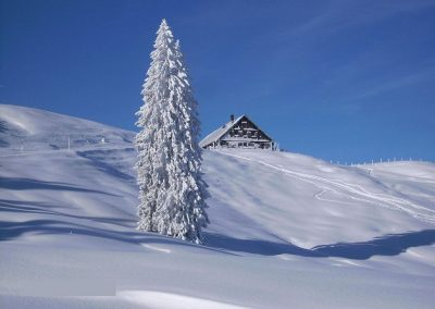 Schneeschuwandern Oberhalb Des Grossen Alpsee