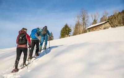 Montag: Gemütliche Schneeschuhtour für Einsteiger am Imberg, mit Einkehr und Pferdeschlittenfahrt