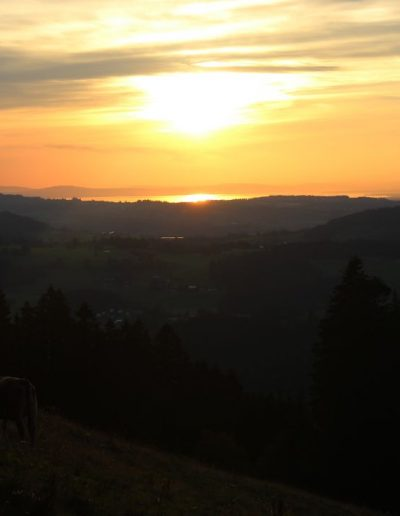 Montag Sonnenuntergangstour