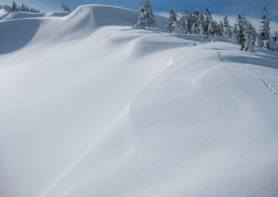 Skitouren Bregenzer Wald Blaicher Horn