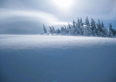 Skitouren Bregenzer Wald Winter